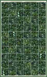 BISOL_Spectrum_Marble_Green_CR (Mały)