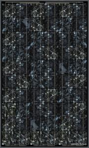 BISOL_Spectrum_Marble_Grey_CR (Mały)